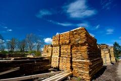ξυλεία συλλογής Στοκ Εικόνες