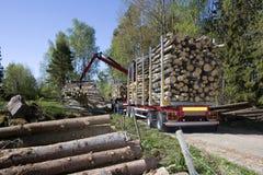 Ξυλεία φόρτωσης Στοκ φωτογραφίες με δικαίωμα ελεύθερης χρήσης