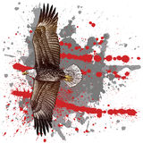 ξυλογραφία ύφους αετών Στοκ εικόνες με δικαίωμα ελεύθερης χρήσης