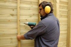 ξυλουργός Στοκ Εικόνες