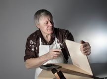 ξυλουργός στοκ φωτογραφία