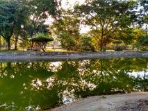 Ξυπνήστε τη λίμνη για τη χάρη διαβίωσης στοκ φωτογραφία με δικαίωμα ελεύθερης χρήσης