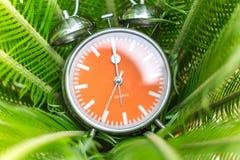 Ξυπνητήρι στο πράσινο υπόβαθρο φύλλων Στοκ εικόνα με δικαίωμα ελεύθερης χρήσης