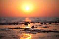 ξυπνώντας θάλασσα Στοκ Εικόνα