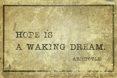 Ξυπνώντας όνειρο Αριστοτέλης Στοκ φωτογραφία με δικαίωμα ελεύθερης χρήσης