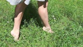 Ξυπόλυτα λεπτά πόδια του περπατήματος γυναικών στην ψηλή χλόη φιλμ μικρού μήκους