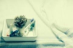Ξυρίζοντας βούρτσα Στοκ Εικόνα