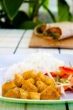 ξυστρισμένο κοτόπουλο ρύζι Στοκ Φωτογραφίες