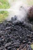Ξυλάνθρακας Dousing Στοκ εικόνα με δικαίωμα ελεύθερης χρήσης