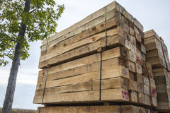 Ξυλεία πριονιστηρίων Στοκ φωτογραφίες με δικαίωμα ελεύθερης χρήσης