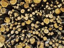 ξυλεία στοιβών Στοκ Φωτογραφία