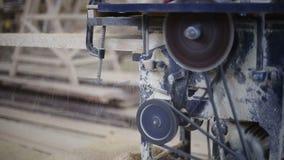 Ξυλουργός που εργάζεται με την κυκλική μηχανή ξυλουργικής πριονιών απόθεμα βίντεο