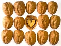 ξύλα καρυδιάς καρδιών Στοκ φωτογραφίες με δικαίωμα ελεύθερης χρήσης