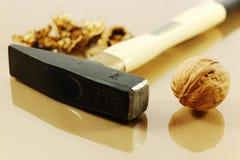 ξύλα καρυδιάς σφυριών Στοκ φωτογραφία με δικαίωμα ελεύθερης χρήσης