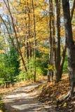 Ξύλα στο πάρκο με τα ίχνη και τον πίνακα πικ-νίκ Στοκ φωτογραφία με δικαίωμα ελεύθερης χρήσης