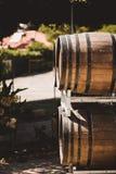 Ξύλινα βαρέλια με το κόκκινο και wihte κρασί για τη δοκιμή στον αμπελώνα στοκ εικόνες