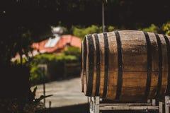 Ξύλινα βαρέλια με το κόκκινο και wihte κρασί για τη δοκιμή στον αμπελώνα Διάστημα αντιγράφων για το κείμενο και το σχέδιο στοκ εικόνες