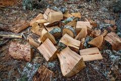 Ξύλινα κομμάτια μετά από την περικοπή τσεκουριών Στοκ φωτογραφία με δικαίωμα ελεύθερης χρήσης