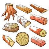 Ξύλινα κούτσουρα και σύνολο στελεχών, φυσικά ξύλινα στοιχεία απεικόνιση αποθεμάτων