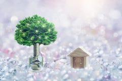 Ξύλινα πρότυπο σπιτιών και βήμα των σωρών νομισμάτων με την ανάπτυξη δέντρων στην κορυφή, υπόβαθρο Bokeh, στοκ εικόνα με δικαίωμα ελεύθερης χρήσης