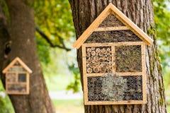 Ξύλινα σπίτια για να διαχειμάσει τα έντομα Στοκ Φωτογραφίες