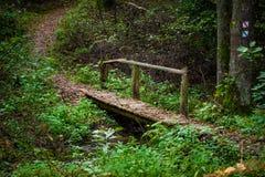 Ξύλινες γέφυρα και πορεία στη δασική Λιθουανία στοκ εικόνες με δικαίωμα ελεύθερης χρήσης