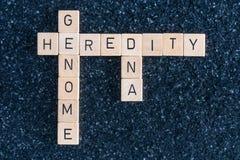 Ξύλινες επιστολές που διαμορφώνουν τις λέξεις DNA γονιδιώματος και κληρονομικότητας στοκ φωτογραφία