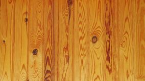Ξύλινη ανασκόπηση αρχιτεκτονικής κατασκευής σχεδίου οικολογικό δάσος σύστασης σκοπών πεύκων ξυλείας υλικό τέλειο φιλμ μικρού μήκους