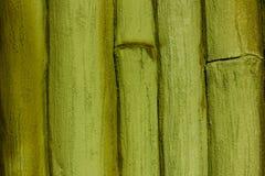 Ξύλινη ανασκόπηση Σύσταση μπαμπού Στοκ Φωτογραφίες