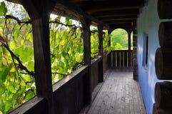 Ξύλινη βεράντα με τα φύλλα σταφυλιών στοκ φωτογραφίες με δικαίωμα ελεύθερης χρήσης