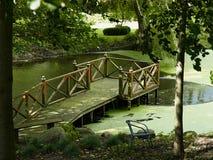 Ξύλινη γέφυρα σε μια πράσινη λίμνη χαλάρωσης σε έναν κήπο Στοκ εικόνες με δικαίωμα ελεύθερης χρήσης