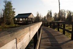 Ξύλινη γέφυρα στο έλος στοκ φωτογραφία με δικαίωμα ελεύθερης χρήσης