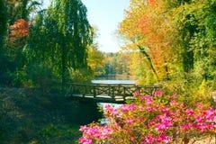 Ξύλινη γέφυρα το φθινόπωρο Στοκ Εικόνες