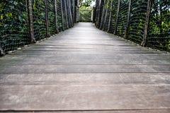 Ξύλινη διάβαση πεζών, ξύλινη γέφυρα μέσω του δάσους Στοκ Φωτογραφίες