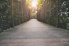 Ξύλινη διάβαση πεζών, ξύλινη γέφυρα μέσω του δάσους Στοκ Εικόνες