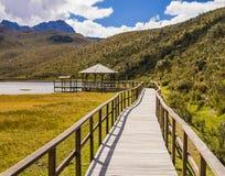 Ξύλινη διάβαση πεζών στη λιμνοθάλασσα Limpiopungo, εθνικό πάρκο Cotopaxi, Ισημερινός Στοκ Φωτογραφίες