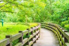 ξύλινη διάβαση πεζών στον κήπο στις πτώσεις Cheonjeyeon, νησί Jeju Στοκ Εικόνες