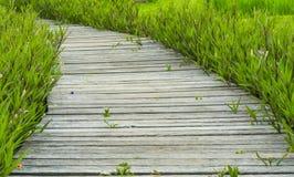 Ξύλινη διάβαση πεζών στον κήπο Στοκ φωτογραφία με δικαίωμα ελεύθερης χρήσης