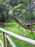 Ξύλινη διάβαση πεζών στο πάρκο EL ParaÃso Cuenca, Ισημερινός στοκ εικόνες
