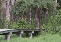Ξύλινη διάβαση πεζών Στοκ εικόνα με δικαίωμα ελεύθερης χρήσης