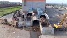 ξύλινη επεξεργασία Εκφόρτωση του ξύλου για την επεξεργασία στα τσιπ απόθεμα βίντεο
