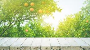 Ξύλινη επιτραπέζια κορυφή με τη θαμπάδα του πορτοκαλιού αγροκτήματος το πρωί Στοκ Εικόνα