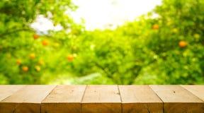 Ξύλινη επιτραπέζια κορυφή με τη θαμπάδα του πορτοκαλιού αγροκτήματος το πρωί Στοκ εικόνα με δικαίωμα ελεύθερης χρήσης