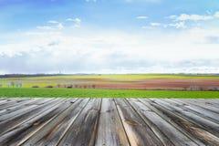 Ξύλινη επιτραπέζια κορυφή με το φρέσκο πράσινο τομέα και μπλε ουρανός το καλοκαίρι Διάστημα για το παρόν ένα προϊόν στοκ φωτογραφίες