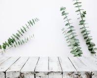 Ξύλινη επιτραπέζια κορυφή στον άσπρο τοίχο με το υπόβαθρο φύλλων δέντρων Στοκ Εικόνες