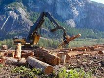 Ξύλινη επιχείρηση σωρών ξυλείας ανυψωτών κινούμενη στοκ εικόνες με δικαίωμα ελεύθερης χρήσης