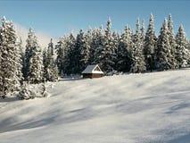 Ξύλινη καλύβα στα βουνά Tatra στοκ εικόνα με δικαίωμα ελεύθερης χρήσης