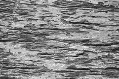 Ξύλινη μακρο φωτογραφία σύστασης Μονοχρωματικός πίνακας ξυλείας με τις ξεπερασμένες γραμμές ρωγμών στοκ φωτογραφίες με δικαίωμα ελεύθερης χρήσης