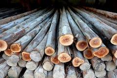 Ξύλινη ξυλεία κύκλων σύστασης για την κατασκευή Στοκ Εικόνα