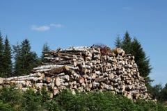 Ξύλινη ξυλεία των φυσικών στοιχείων συμπεριφοράς Στοκ Φωτογραφία
